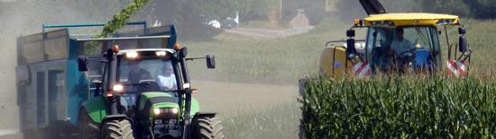 Chantier de récolte du maïs ensilage
