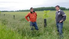 Agroforesterie - témoignage