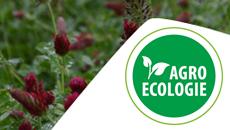 Formation Normandie : Produire autrement avec l'agro-écologie