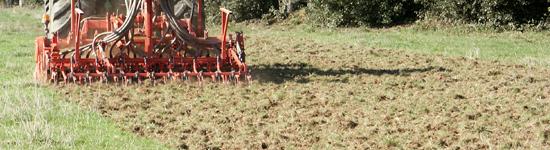 Rénovation des prairies exemple herse